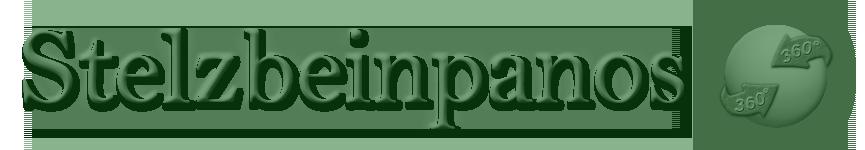Stelzbeinpanos.de logo